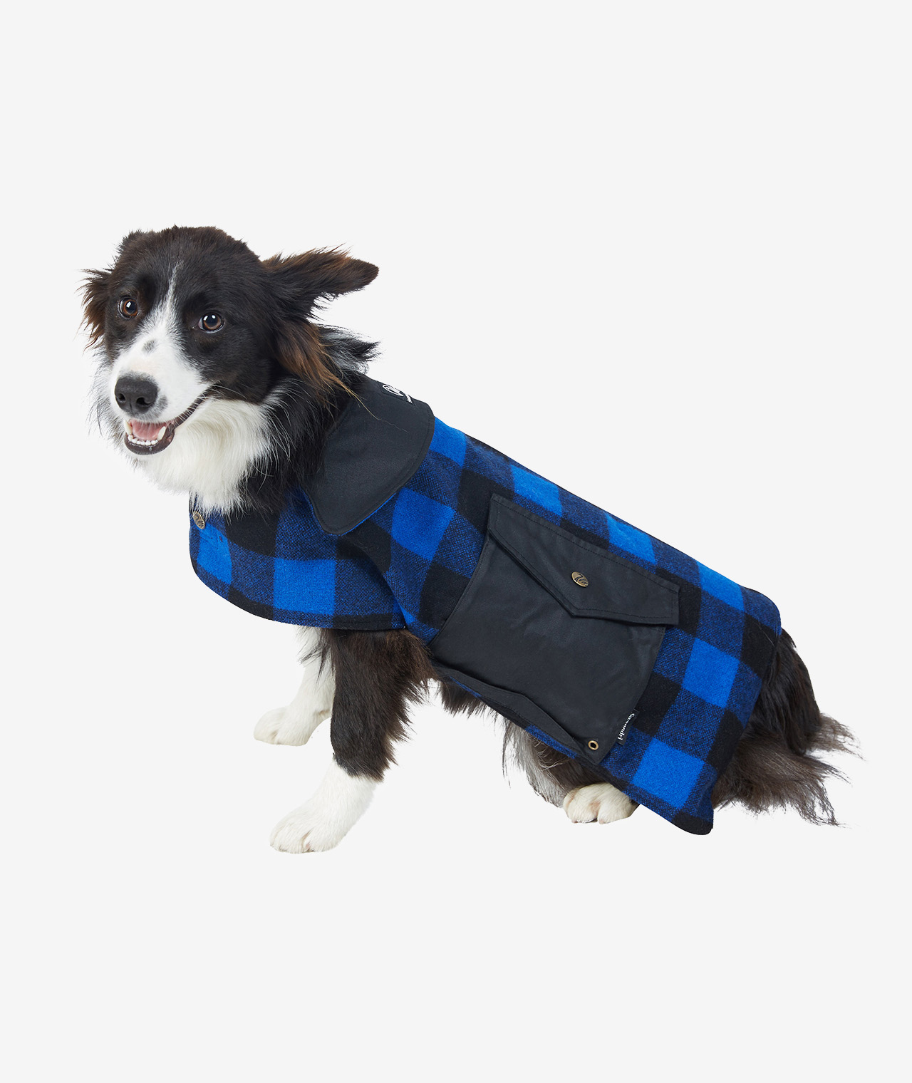 Swanndri Classic Wool Dog Coat