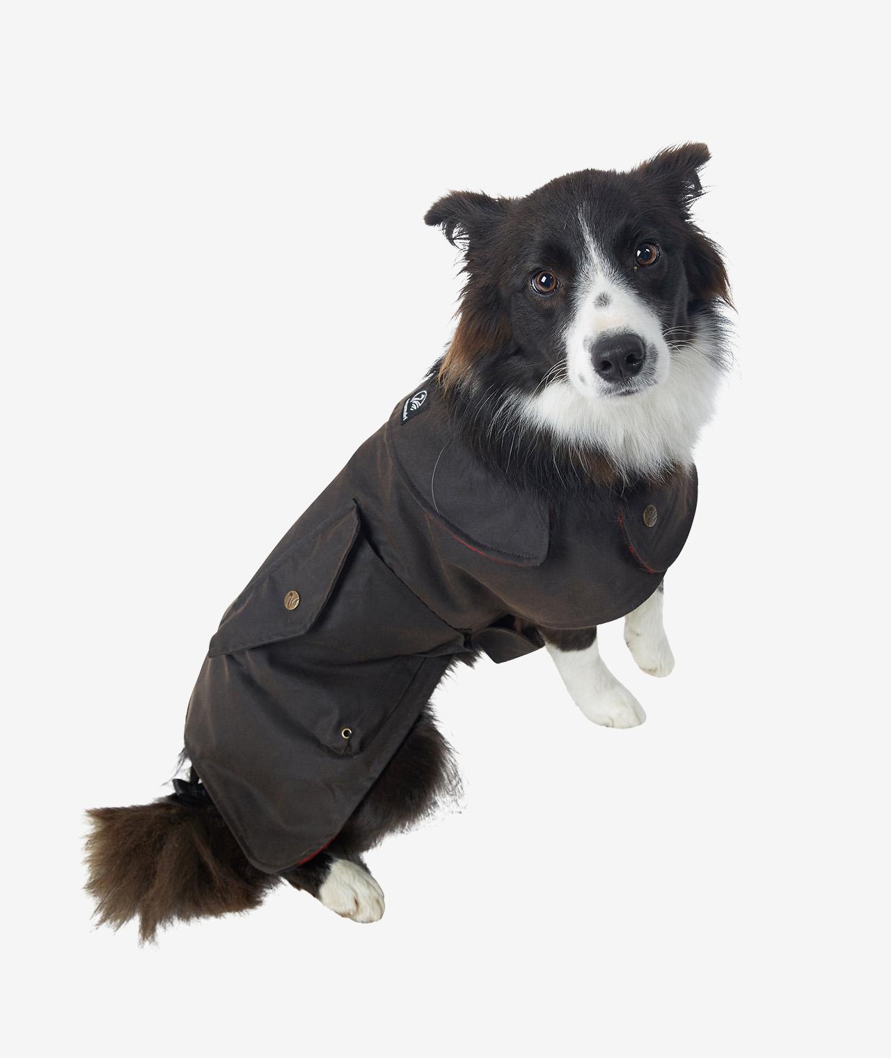 Swanndri Hunter Oilskin Dog Coat