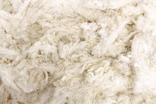 ZQRX Merino Wool Fleece